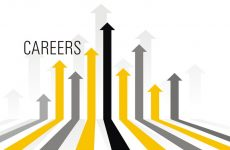 How to Choose the Perfect Career?